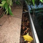 Clean Your Home's Gutter Twice a Year to Prevent Flood Damage