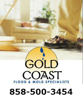 Flood and Water Damage Repair Services