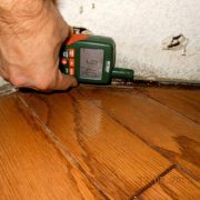 Home Mold Inspection – Detecting Problems Before Buying a House