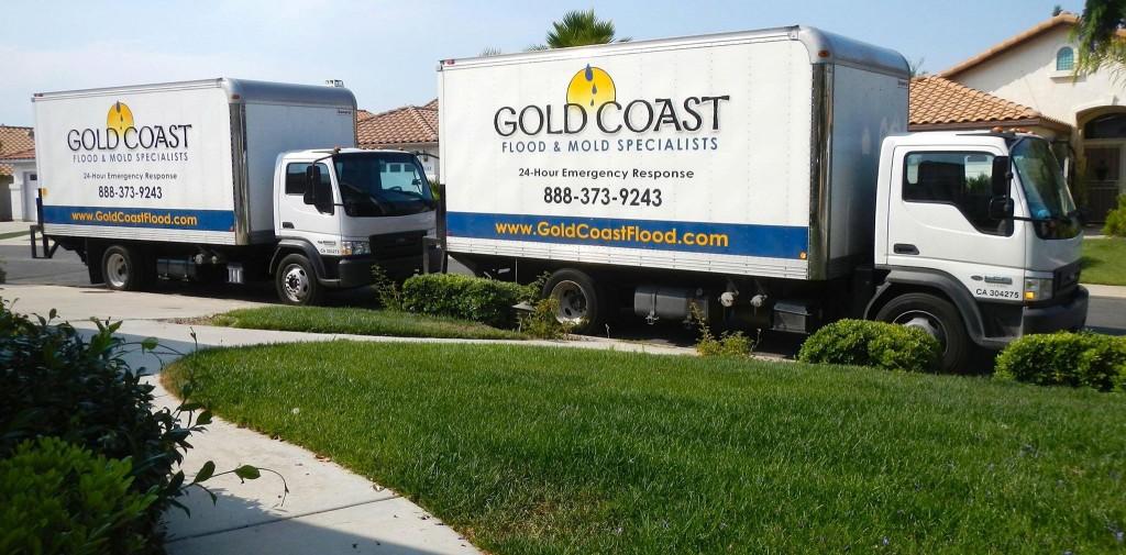 mold remediation service San Diego CA