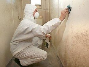 clean-up-mold