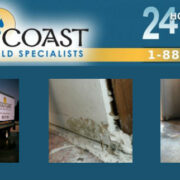 About Gold Coast Flood & Mold Specialists