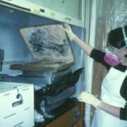Recovery of Water Damaged Collections with Mold
