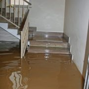 Why Call a San Diego Water Damage Specialist