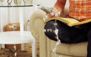 Prevent Water Damage – San Diego Plumbing Tips