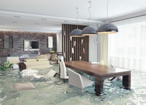 minimize water damage San Diego CA