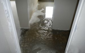 Commercial Water Damage Cleanup Tips