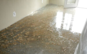 Water Removal San Diego CA