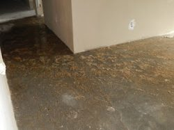Water Damage Restoration Services San Diego CA